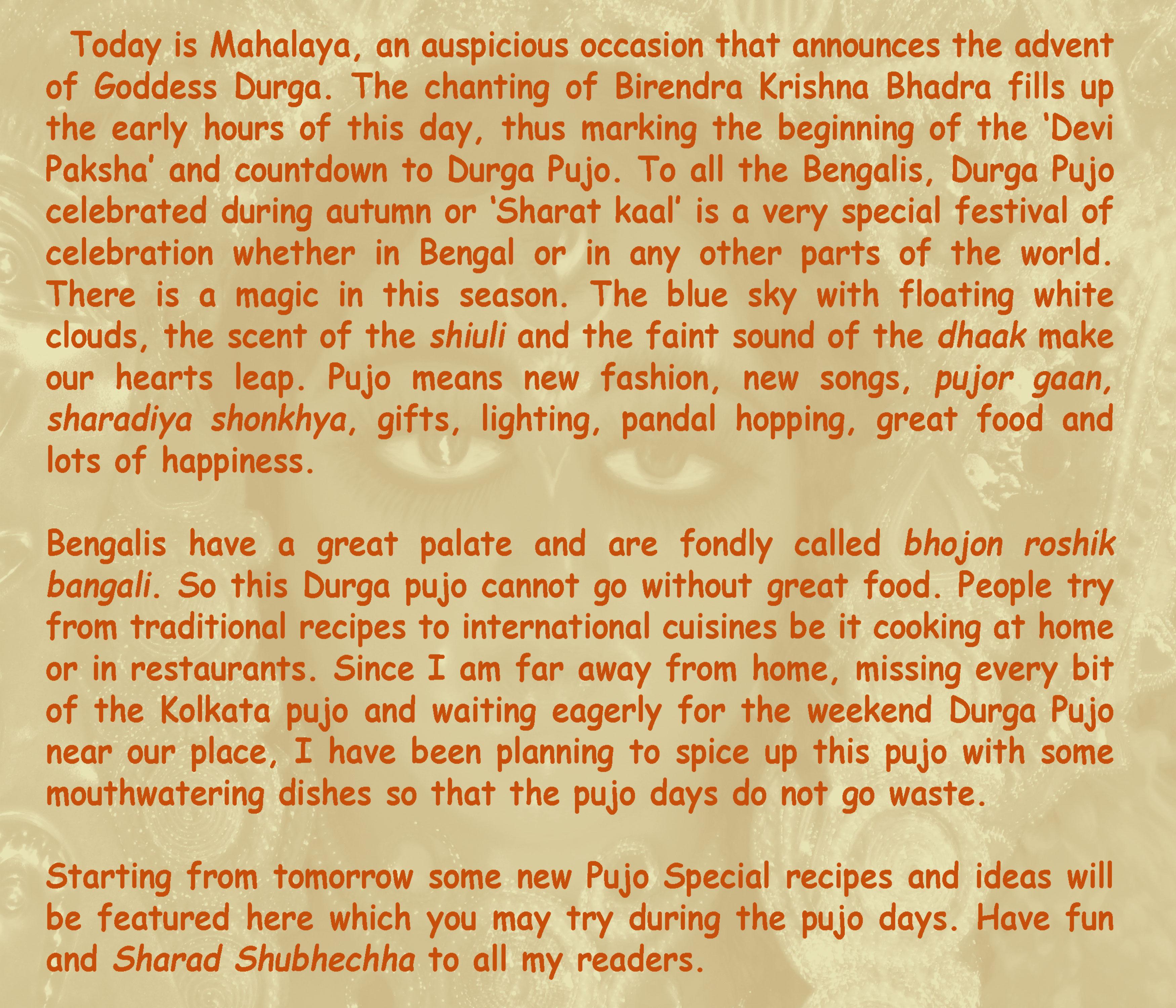 Durga Pujo 2012 : Countdown Begins…
