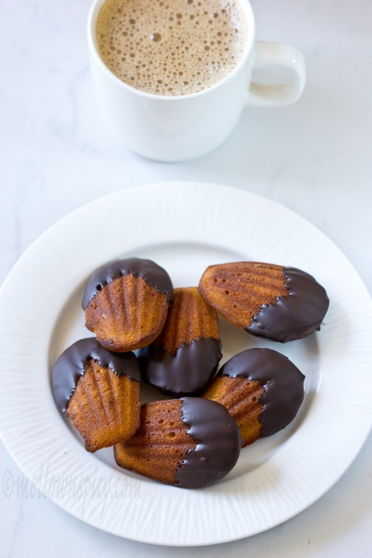 Chocolate Dipped Pumpkin Madeleine